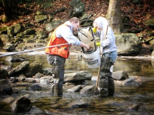 Environmental Field Testing and Sample Collection